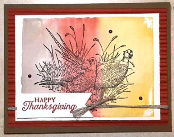 Thankful for Pleasant Pheasants